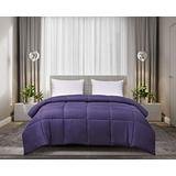 Blue Ridge Home Fashions Light Weight Solid Microfiber Down Alternative All Season Comforter-Hypoallergenic Polyester Fill, King, Purple