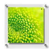 """Wexel Art 23"""" x 23"""" Square Magnetic Single Panel Grade Acrylic Floating Picture Frame in White/Yellow, Size 23.0 H x 23.0 W x 1.5 D in   Wayfair"""