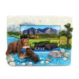 Millwood Pines Coble Stone Grizzly Bear Picture Frame Wood in Blue/Brown, Size 6.0 H x 7.25 W x 0.5 D in | Wayfair 8561DEFC22D04528AF914D6D02129D9E