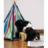 Pacific Play Tents Indoor Forts & Tents - Blue & Yellow Pet Tent