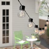 Joss & Main Elberta 20' Outdoor LED Solar Powered 10 - Bulb Globe String Light in Black   Wayfair TOE062