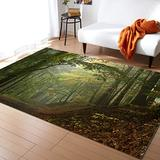 Forest Large Area Rugs 3' x 5', Throw Carpet Floor Cover Nursery Rugs For Kids, Misty Autumn Forest with Shaded Trees Foggy Dreamy Woodland Scene Modern Kitchen Mat Rugs For Living Room/Bedroom