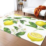Nature Large Area Rugs 3' x 5', Throw Carpet Floor Cover Nursery Rugs For Kids, Exotic Lemon Tree Branches Yummy Delicious Kitchen Gardening Design Modern Kitchen Mat Rugs For Living Room/Bedroom