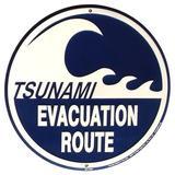 Treasure Gurus Tsunami Evacuation Route Metal Sign Warning Wave Beach Road Plaque Aluminum in Black/Gray, Size 12.0 H x 12.0 W x 1.0 D in   Wayfair