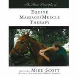 The Basic Principles of Equine Massage