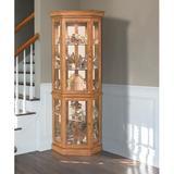 Lark Manor™ Woodlake Lighted Corner Curio Cabinet Wood in Brown, Size 72.0 H x 31.0 W x 20.0 D in | Wayfair 45951