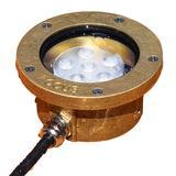 Ravenna Brass Round LED Landscape Underwater Light