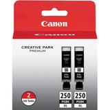 Canon PGI-250PGBK XL High-Capacity Pigment Black Ink Cartridge 2-Pack 6432B004