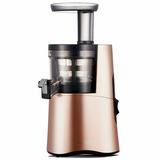 Hurom H-AA Alpha Series Slow Masticating & Cold Press Juicer, Size 16.0 H x 7.8 W x 8.8 D in | Wayfair H-AA-LBB17