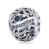 Birthstone Charms for Charms Bracelet- 925 Sterling Silver Bead Flower Openwork Charms, Happy Birthday Charms for Bracelet and Necklace (September Birthstone)
