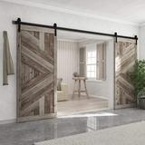 winsoon Sliding Standard Double Barn Door Hardware Kit in Black, Size 1.57 H x 156.0 W x 5.0 D in | Wayfair GCM1881