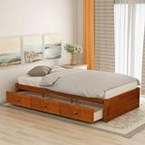 Wood Twin Bed Platform Bed with 3 Storage Drawers Wood Storage Bed with 3 Storage Drawer, Wooden Slat, No Box Spring Need