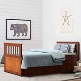 Giantex Twin Captain's Bed with Trundle Bed, Wood Storage Daybed with 3 Storage Drawers, Bunk Bed Alternative, No Box Spring Needed, Wooden Platform Bed Great for Kids Guests Sleepovers (Walnut)