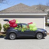 Creative Converting 36 Piece Dinosaur Parade Car Decoration Kit Paper in Green/Red   Wayfair DTCDINOX1A