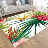 Jacrane Outdoor Area Rug 5X7 Area Rug Soft Area Rug Watercolor Tropical Pattern Background Strelitzia Palm Large Area Rug Farmhouse Area Area Rugs for Living Room Cozy Area Rug Modern Area Rug