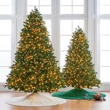 Noble Fir Full Profile Tree - 9 Ft. - Frontgate - Christmas Tree
