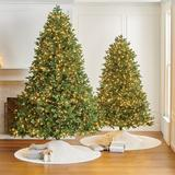 Noble Fir Full Profile Tree - 7-1/2 Ft. - Frontgate - Christmas Tree