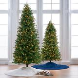 Douglas Fir Slim Profile Tree - 10 Ft. - Frontgate - Christmas Tree