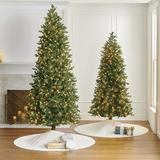 Noble Fir Slim Profile Tree - 12 Ft. - Frontgate - Christmas Tree