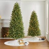 Douglas Fir Slim Profile Tree - 12 Ft. - Frontgate - Christmas Tree