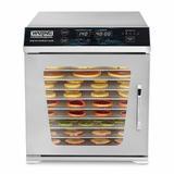 Waring 10 Tray Food Dehydrator in White, Size 20.5 H x 18.25 W x 17.5 D in | Wayfair WDH10