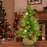 The Holiday Aisle® Dunhill Fir 2' Green/Champagne Gold Artificial Christmas Tree w/ 15 Clear/White Lights in Green/White/Yellow | Wayfair