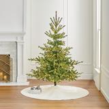 Starry Night Alpine Spruce Tree - Frontgate - Christmas Tree