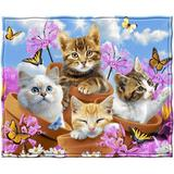 Trinx Garden Wonder Kittens Super Soft Plush Fleece Throw Polyester in Blue/Brown/Pink, Size 60.0 H x 50.0 W in | Wayfair