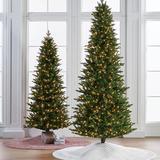 Gallatin Pine Tree - 9 Ft. - Frontgate - Christmas Tree