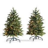 Set of 2 Hyde Park Pathway 3 ft. Trees - Frontgate - Outdoor Christmas Decorations