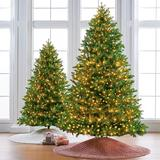 Balsam Fir Full Profile Tree - 7-1/2 Ft. - Frontgate - Christmas Tree