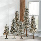 Christmas Pre-Lit Flocked Alpine Tree - 5' - Grandin Road