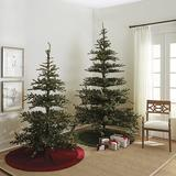 Prelit Noblis Fir Tree 9' - Ballard Designs