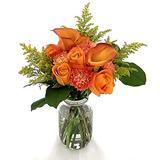 "Rachel Cho Floral Design - Orange You Nice - Fresh Cut Flower Bouquet - Fast Delivery - Fresh Flowers - Floral Arrangement - Flower Bouquet - Approx. 4 lbs. 15"" x 9"" - with Vase"