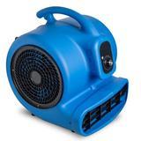 """CHO 19"""" Oscillating Blower Fan in Blue, Size 19.0 H x 19.0 W x 19.0 D in   Wayfair CHO-AL-BL_250"""
