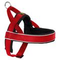 Hunter Norwegergeschirr Racing rot/schwarz, Größe: M-L / Breite: 2,5 cm