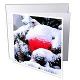 3dRose A Snow-Covered Christmas Tree, a Large red Glass Ornament Ball - Greeting Cards (gc_328721_2)