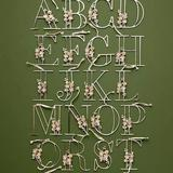 Anthropologie Holiday   Anthropologie Floral Monogram Metal Ornament   Color: Gold/Silver   Size: Various