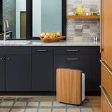 Alen BreatheSmart w/ HEPA Filter in Gray, Size 22.25 H x 16.75 W x 10.0 D in | Wayfair 401002