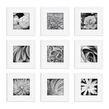 Pinnacle Frames and Accents Square Gallery Collage Wall Frame 9-piece Set, Black, 13X13