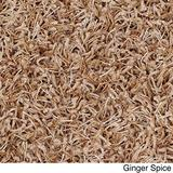 Shaw Super Shag Area Rug Uptown Girl Collection Golden Rule 2 Feet 6 Inches x 12 Feet.
