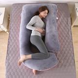 Alwyn Home Lawanda Cotton Plush Support Pillow Cotton/Velour, Size 27.0 H x 57.0 W x 7.9 D in   Wayfair C14A121CCC7040559C3014D60558A57C