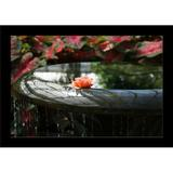 Ebern Designs Rose Fountain - Photograph Print on Paper Paper in Brown/Green/Orange, Size 24.0 H x 36.0 W x 1.25 D in | Wayfair