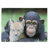 Chimpanzee Cat Puzzles for Adults 520 Piece Jigsaw Puzzles Challenging 520 Piece Puzzle Educational Family Game DIY Mural Toys Gift for Adults Kids Teens Jigsaw Puzzles