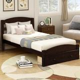 Holker Twin Solid Wood Platform Bed by Harriet Bee Wood in Brown/Green, Size 36.1 H x 41.3 W x 79.5 D in   Wayfair 1BB8B1FE60914E1C906A7FEF6966B45D