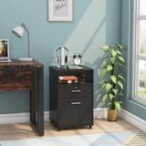 Latitude Run® Grados 2-Drawer Mobile Vertical Filing Cabinet in Black, Size 26.0 H x 15.7 W x 15.7 D in | Wayfair AF6844DAE36A4C8194D05187192E64E9
