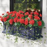 Geranium Window Box Filler - Red - Grandin Road