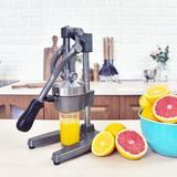 ARC Heavy Duty Citrus Juicer in Gray, Size 15.5 H x 6.8 W x 8.0 D in | Wayfair AFH-FJ-007G