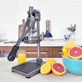 Multifunction French Arc Citrus Juicer in Gray, Size 18.0 H x 6.8 W x 8.5 D in | Wayfair AFH-FJ-008G