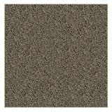 "12'X12' Square Woodland Fleck Frieze Shag Indoor Area Rug Carpet. Soft and Plush 32 oz 3/4"" Thick Frieze Indoor Area Rug"